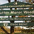 Sutton Manor Wood
