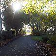 Crosby: Moorside Park